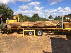 D T Dye On Site Mobile Timber Saw Milling Service
